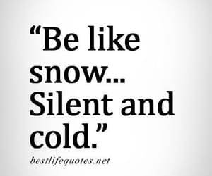 cold, silent, and snow image