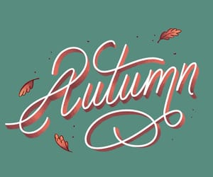 autumn, drawings, and fall image