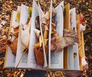 autumn, books, and Letter image