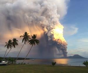 burn, palmtree, and sun image