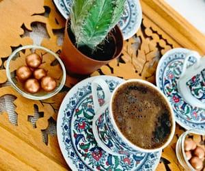 cactus, coffee, and Sunday image