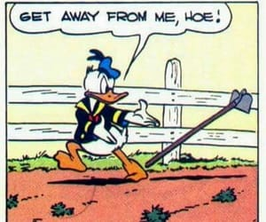 donald duck, funny, and hoe image