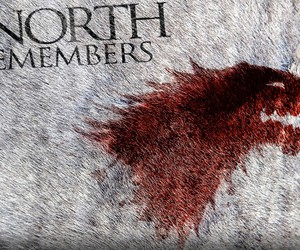 stark, robb, and the king in the north image