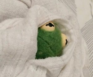 kermit, meme, and mood image