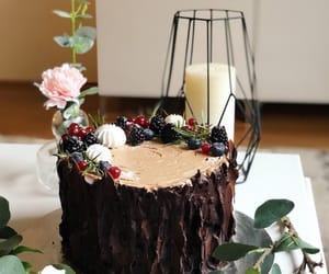 baking, forest, and cake image