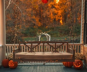 autumn, pumpkins, and autumn leaves image