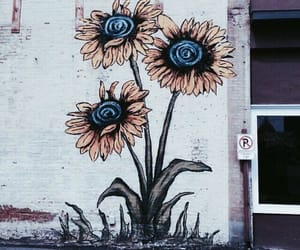 flowers, street art, and wall image