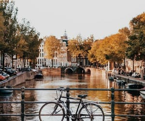 amsterdam, autumn, and landscape image