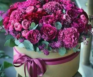 belleza, regalo, and flores image