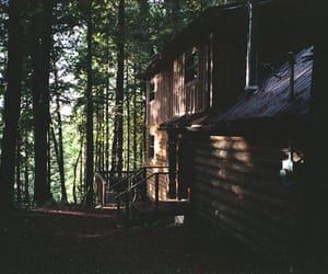 cabin, forest, and woods image