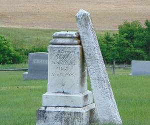 grave, grey, and gray image