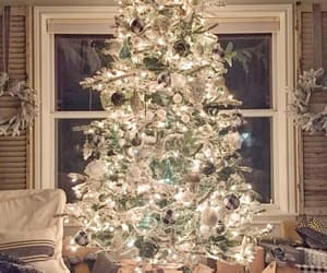 admire, christmas, and cosy image