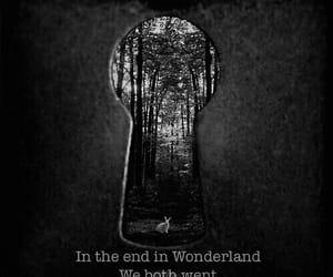 wonderland, alice in wonderland, and alice image