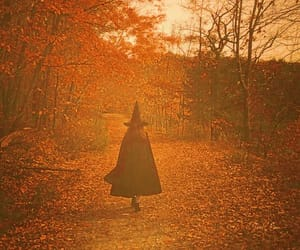 autumn, witch, and Halloween image