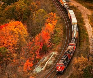 autumn, canada, and charming image