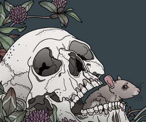 animal, animals, and drawings image