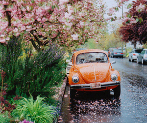 car, flowers, and vintage image