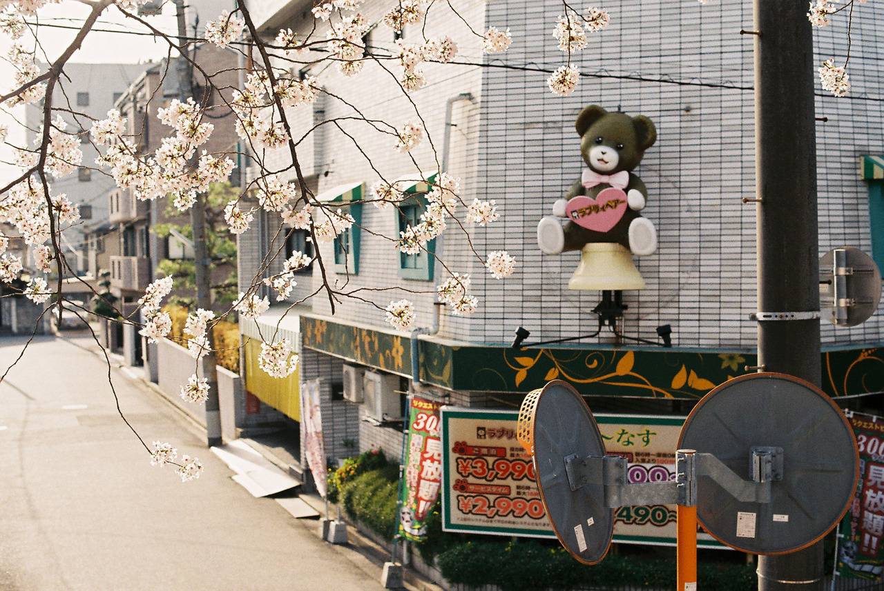 Hiroshima, japan, and photography image
