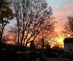autumn, sun, and sunrise image