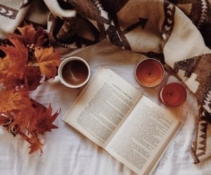 autumn, cozy, and leaves image