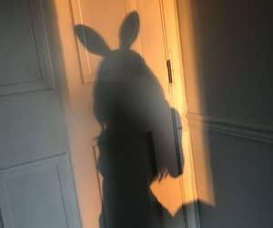 girl, shadow, and bunny image