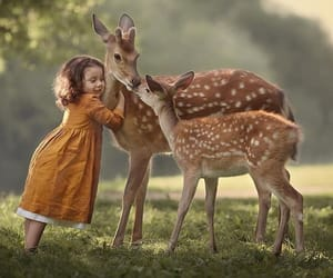 animals, fawn, and little girl image