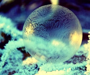 beautiful, blue, and frost image
