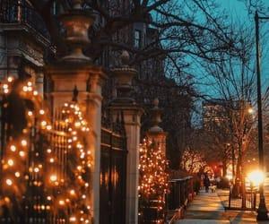 light, winter, and autumn image
