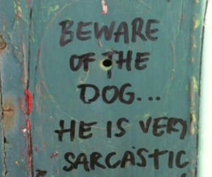 dog, funny, and quotes image