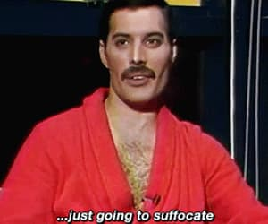 Freddie Mercury, funny, and gif image