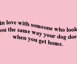 quotes, dog, and home image
