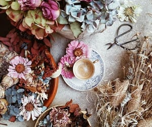 cafe, coffee, and flores image