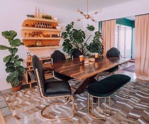 cosy, interior design, and plants image
