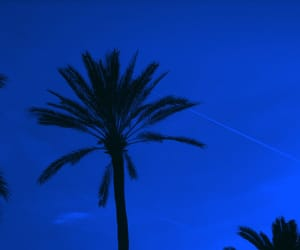 blue, aesthetic, and sky image