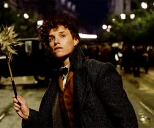 gif, cute, and the crimes of grindelwald image