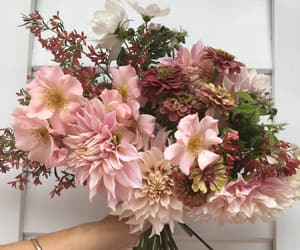 flowers, soft, and vintage image