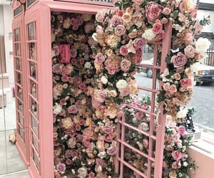 dreamy, flowers, and phone booth image