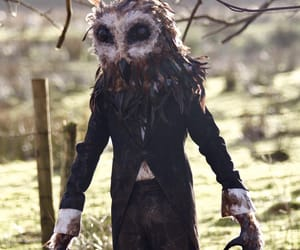 Cornwall, england, and cryptid image