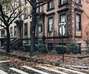 autumn, city, and street image
