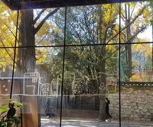 autumn, coffee shop, and window image