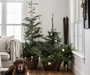 art, holiday, and table setting ideas image