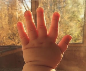 baby, hands, and love image
