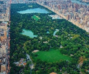 travel, Central Park, and new york image