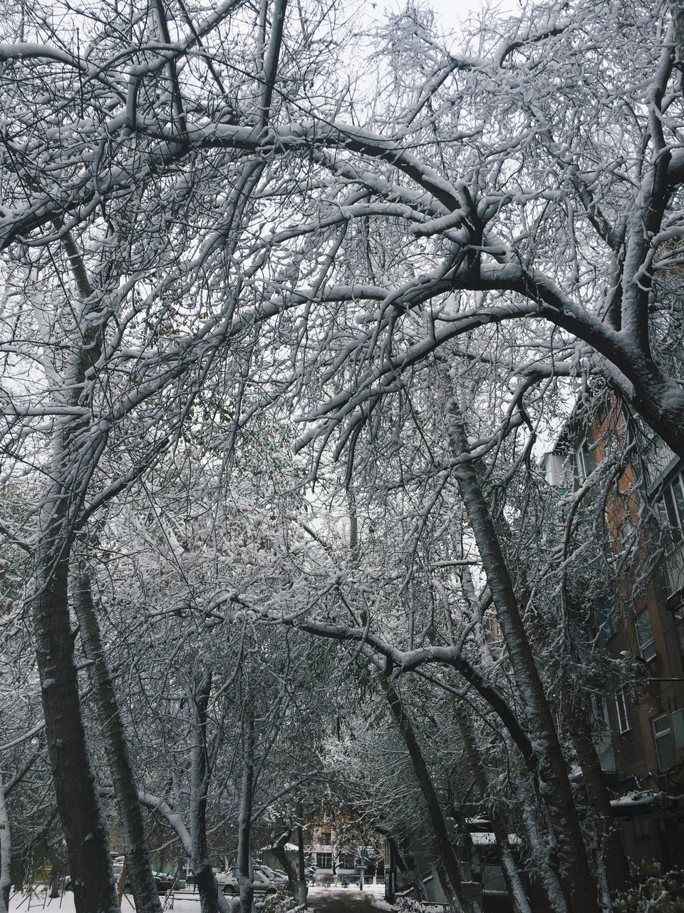 Image About Winter In Mine By G On We Heart It