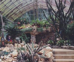 botanical, bedugul, and bali image