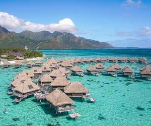 beaches, beachfront resorts, and bungalow image