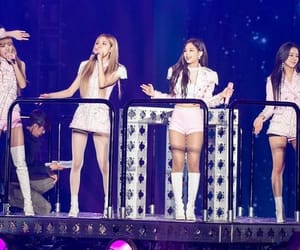 concert, rose, and ot4 image