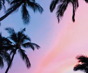 blue, sky, and pink image