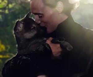 tom hiddleston, loki, and cute image