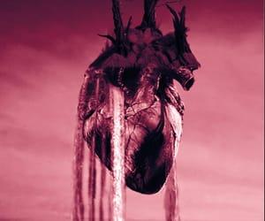 aesthetics, art, and heart image